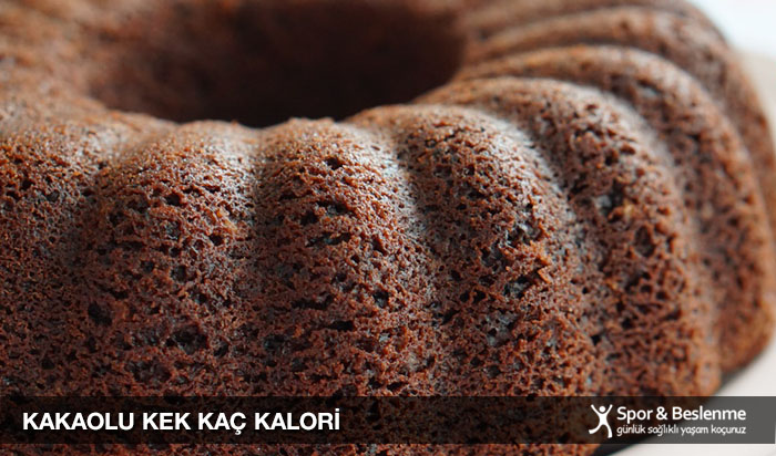 1 dilim kakaolu kek kaç kalori