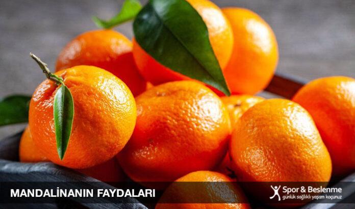 mandalina faydaları nelerdir