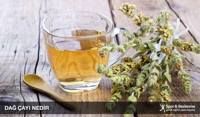 dağ çayı nedir