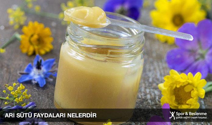 arı sütü faydaları nelerdir