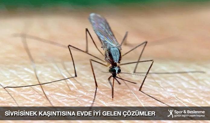 sivrisinek kaşıntısına evde iyi gelen yöntemler