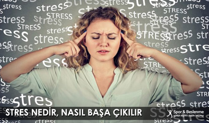 Stres Nedir, Nasıl Başa Çıkılır