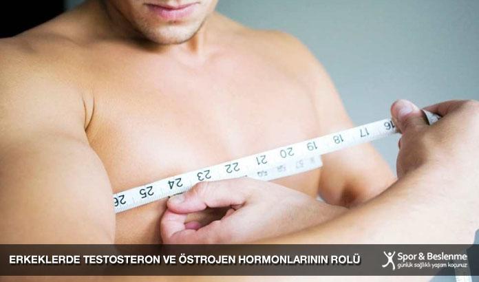 Erkeklerde Testosteron ve Östrojen Hormonlarının Rolü